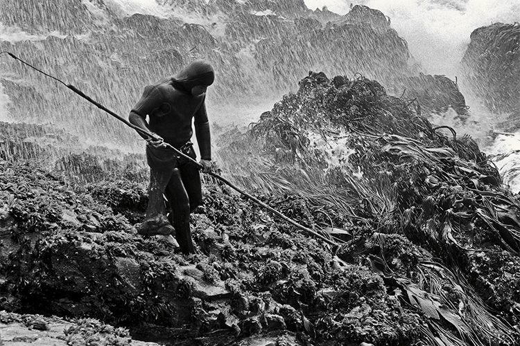 spear fisherman in chile, photographed by jeff johnson