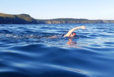 Guided Swim Adventure